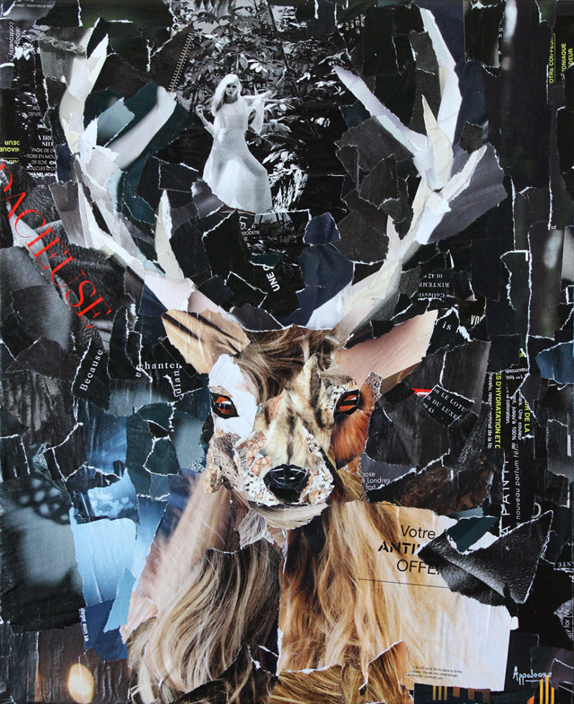 Oh my deer - portrait d'un cerf, collage