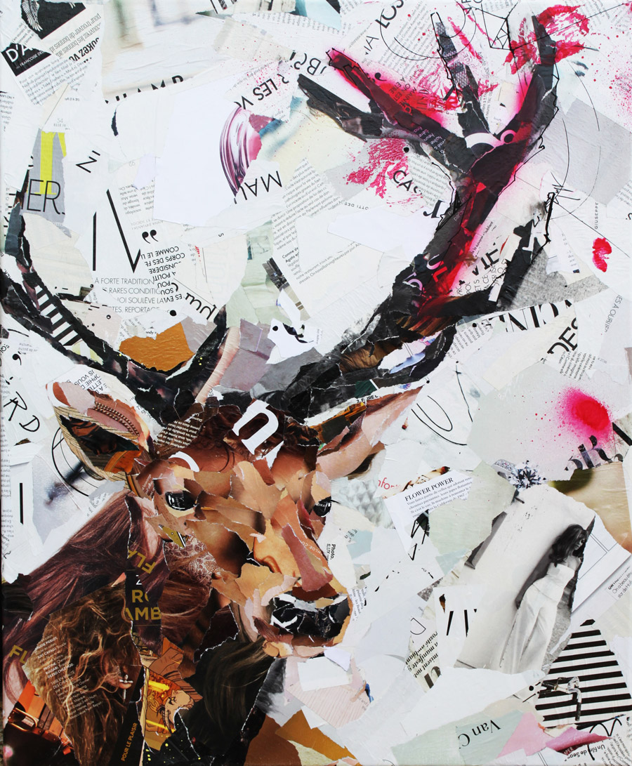 Rencontre - Collage cerf et graffiti, Appaloosa art
